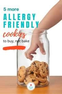 5 More Allergy Friendly Cookies to Buy, Not Bake
